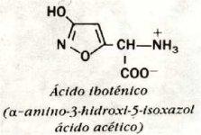 Ácido iboténico